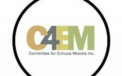 Terri Cowley Interviews Deanne Armstrong about the Revive Echuca-Moama Campaign – March 23, 2021